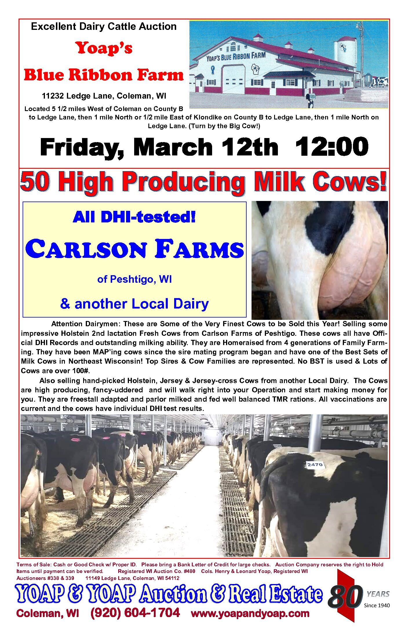 Outstanding Milk Cows at Auction!